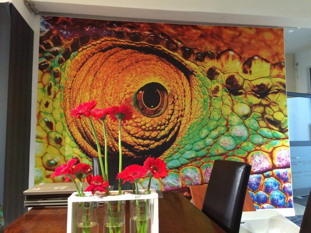 Fototapete Reptil